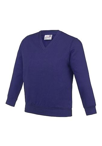 AWDIS V-Ausschnitt-Pullover »Academy Kinder Junior Schul Sweatshirt mit V-Ausschnitt... kaufen
