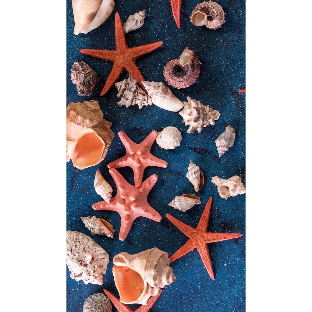 good morning Strandtuch »Sea Star«, (1 St.), mit Seesternen und Muscheln