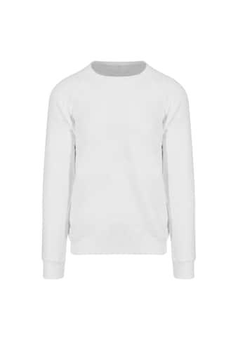 AWDIS Rundhalspullover »Just Hoods Herren Graduate Heavyweight Sweatshirt« kaufen