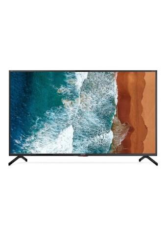 """Sharp LED-Fernseher »50BN5EA«, 127 cm/50 """" kaufen"""
