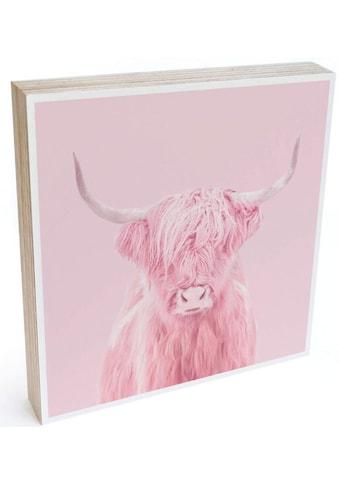 Wall-Art Holzbild »Tischdeko Rosa Highland Cow«, (1 St.) kaufen