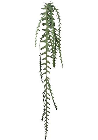 Creativ green Kunstgirlande »Epiphyllumranke« kaufen
