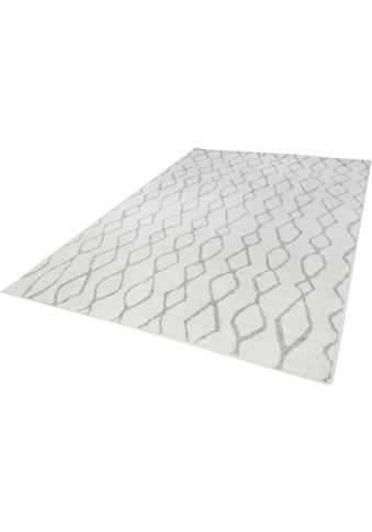 Teppich, »Bolonia 92«, Andiamo, rechteckig, Höhe 6 mm, maschinell gewebt kaufen