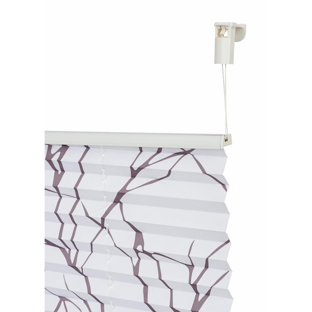 my home Plissee »Dondo«, Lichtschutz, ohne Bohren, verspannt, im Fixmass