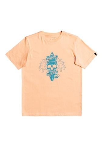 Quiksilver T-Shirt »Night Surfer« kaufen