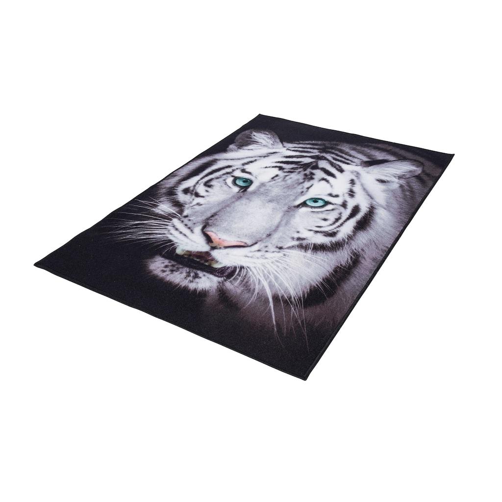 Andiamo Teppich »Weisser Tiger«, rechteckig, 4 mm Höhe, Wohnzimmer