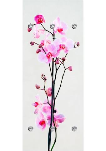 queence Garderobenpaneel »Orchidee«, mit 6 Haken, 50 x 120 cm kaufen