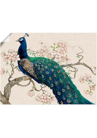 Artland Wandbild »Pfau & Blüten II«, Vögel, (1 St.), in vielen Grössen & Produktarten - Alubild / Outdoorbild für den Aussenbereich, Leinwandbild, Poster, Wandaufkleber / Wandtattoo auch für Badezimmer geeignet kaufen