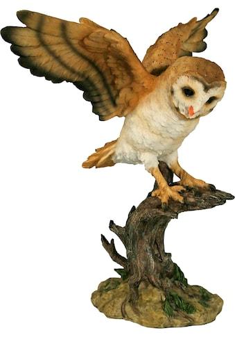 Casa Collection by Jänig Tierfigur »Eule mit gestreckten Flügeln« kaufen