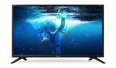 """Sharp LED-Fernseher »32BC2E«, 81 cm/32 """", WXGA kaufen"""