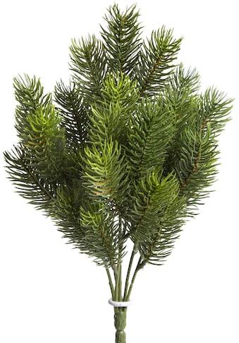 Botanic-Haus Künstliche Zimmerpflanze »Tannenbusch« kaufen