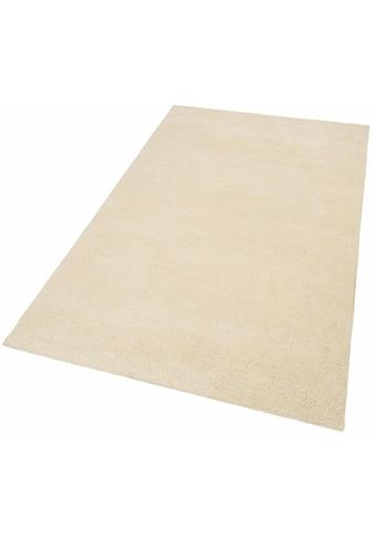 THEKO Wollteppich »Hadj Uni«, rechteckig, 25 mm Höhe, echter Berber, reine Wolle, handgeknüpft, Wohnzimmer kaufen
