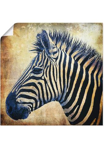 Artland Wandbild »Zebra Porträt PopArt« kaufen