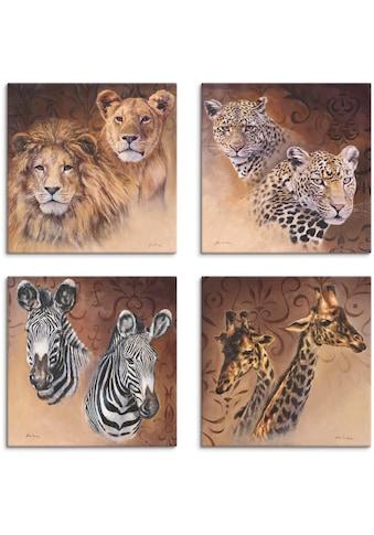 Artland Leinwandbild »Löwen Leoparden Zebra Giraffen« kaufen