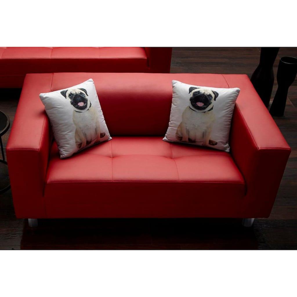 COLLECTION AB 2-Sitzer, mit 2 lustigen Hunde-Zierkissen, frei im Raum stellbar