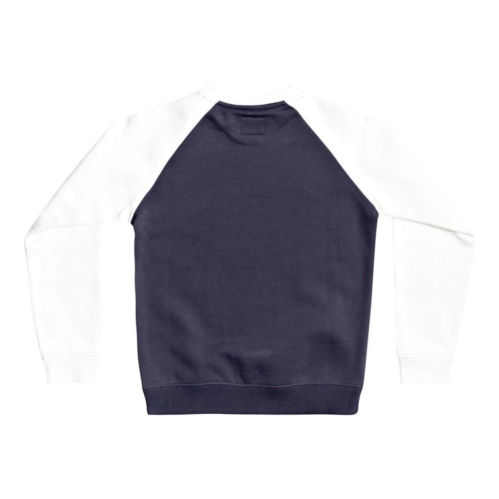 DC Shoes Sweatshirt »Star Pilot«