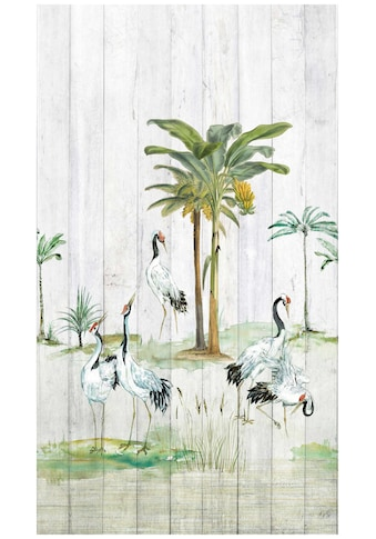 BODENMEISTER Fototapete »Vögel Palmen Holzwand«, Rolle 2,80x1,59m kaufen