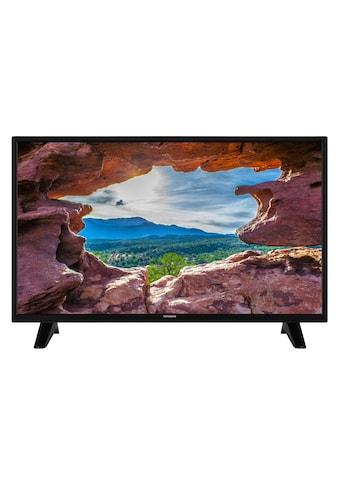"LCD-LED Fernseher »32HE1005«, 81 cm/32 "" kaufen"