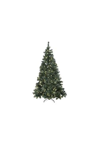 STAR TRADING Künstlicher Weihnachtsbaum »Ottawa 260 LED« kaufen