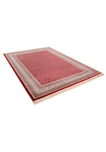 THEKO Orientteppich »Abbas Meraj Mir«, rechteckig, 12 mm Höhe, reine Wolle, handgeknüpft, mit Fransen, Wohnzimmer kaufen