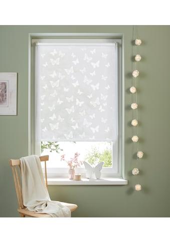Seitenzugrollo »Schmetterling«, my home, Lichtschutz, ohne Bohren, freihängend kaufen