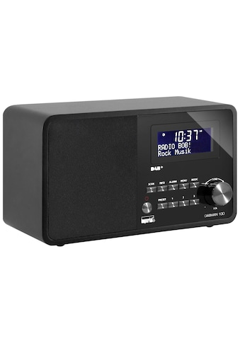 DAB Radio, Imperial, »Dabman 100 Schwarz« kaufen