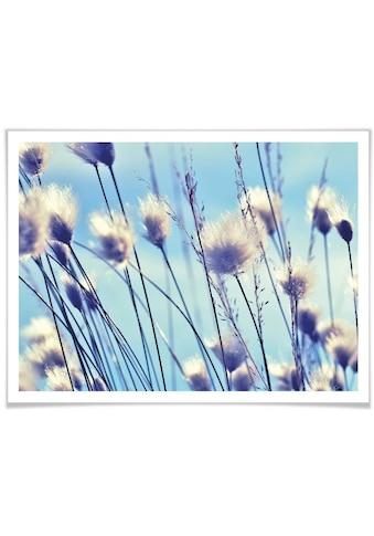 Wall-Art Poster »Wind im Gras«, Landschaften, (1 St.) kaufen