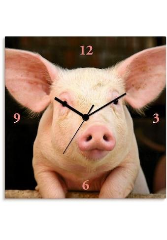 Artland Wanduhr »Vorwitziges Schwein« kaufen