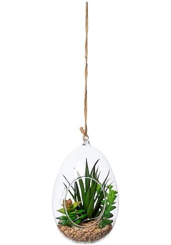 Creativ green Künstliche Zimmerpflanze »Sukkulenten - Mix mit LED - Beleuchtung« (1 Stück) kaufen
