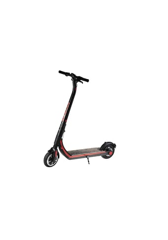 E-Scooter »Colibri 2 16Ah« kaufen