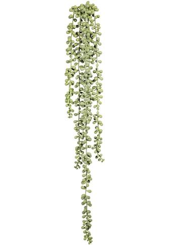 Creativ green Kunstranke »Sedumhänger«, 2er Set kaufen