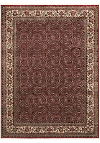 OCI DIE TEPPICHMARKE Orientteppich »Kamaro Herati«, rechteckig, 20 mm Höhe, reine... kaufen