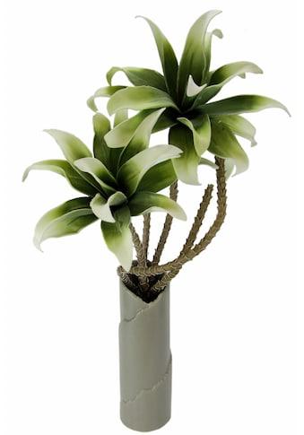 Kunstpflanze »Soft - Magnolie in Vase« acheter
