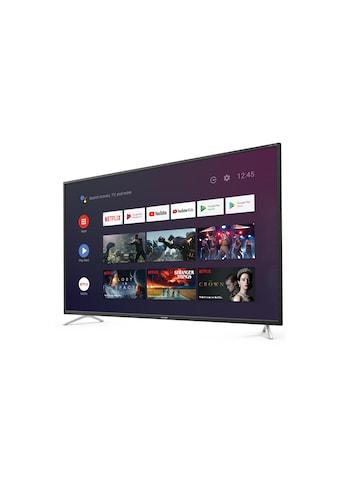 TV, Sharp, »50BL2EA« kaufen