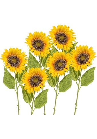 Creativ green Kunstblume (6 Stück) kaufen