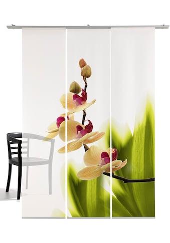 emotion textiles Schiebegardine »Orchideenwunder«, HxB: 260x60, mit Befestigungszubehör kaufen