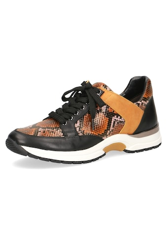 Caprice Sneaker, in Snake-Optik kaufen