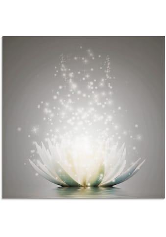 Artland Glasbild »Magie der Lotus - Blume« kaufen