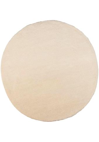 THEKO Wollteppich »Taza Royal«, rund, 24 mm Höhe, echter Berber, reine Schurwolle, handgeknüpft, Wohnzimmer kaufen