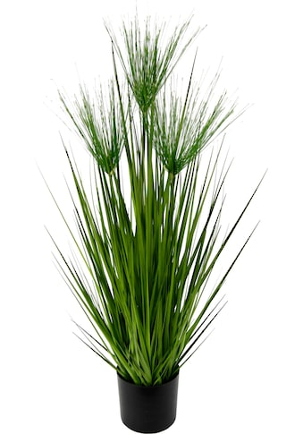Kunstpflanze »Zyperngras im Topf« kaufen