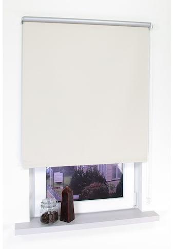 Liedeco Seitenzugrollo »Thermo-Rollo«, verdunkelnd, energiesparend kaufen
