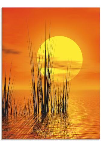 Artland Glasbild »Sonnenuntergang mit Schilf« kaufen