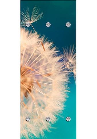 queence Garderobenpaneel »Pusteblume in gross«, mit 6 Haken, 50 x 120 cm kaufen