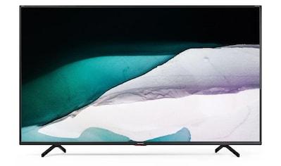 """Sharp LED-Fernseher »65BN5EA«, 164 cm/65 """" kaufen"""