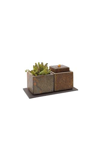 Zimmerbrunnen »Vida 11, aus Naturschiefer, mit Pflanzengefäss« kaufen