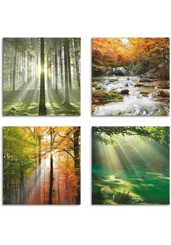 Artland Leinwandbild »Wald Wasserfall Herbsttag« kaufen