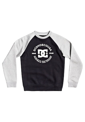 DC Shoes Sweatshirt »Star Pilot« kaufen