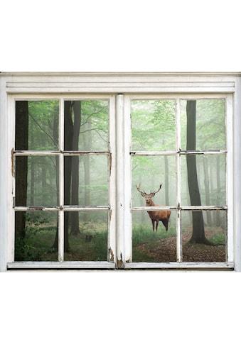 queence Wandsticker »Hirsch im Wald« kaufen
