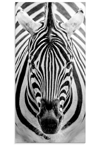 Artland Glasbild »Zebra« kaufen