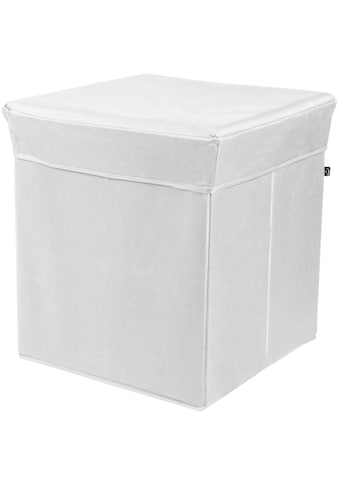 Phoenix Aufbewahrungsbox »Stor' It«, (1 St.), B/H/T: 41 x 44 x 41cm kaufen
